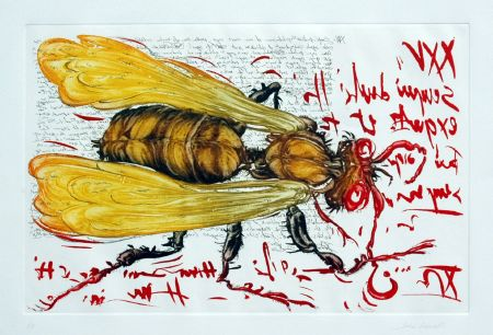 4 Insetti — the Wasp (1994). Coloured mezzotint and etching, plate 32 x 50 cm (foglio 50 x 65 cm).